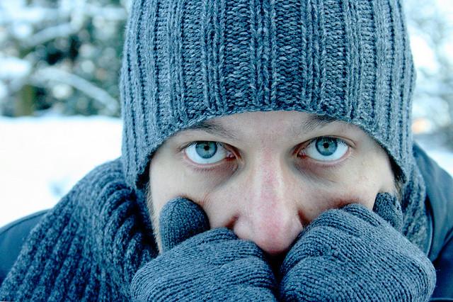 freddo-2
