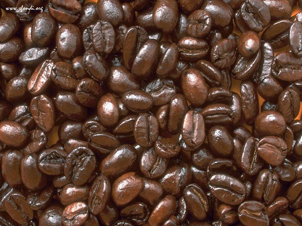 caffeina-contro-caffè