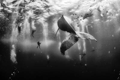 I vincitori del 2015 National Geographic Traveler Photo Contest