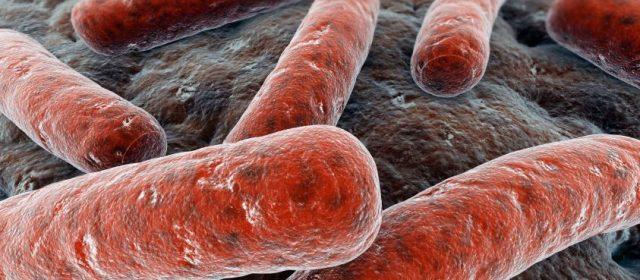 Tubercolosi: un infetto su due è italiano. Sintomi non riconoscibili